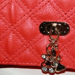 fine-detail-red-bag